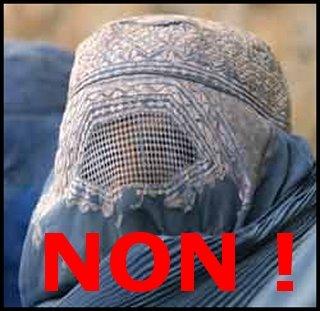 Le projet de loi prohibant le port du voile islamique - Loi interdisant le port du voile en france ...