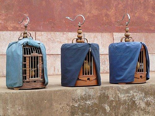 14 ao t 2011 francaisdefrance 39 s blog. Black Bedroom Furniture Sets. Home Design Ideas