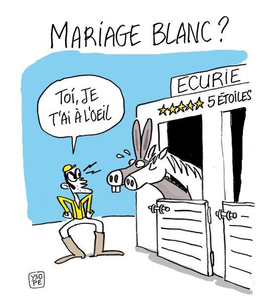 Les immigr s se servent du mariage pour devenir fran ais francaisdefrance - Comment devenir logis de france ...