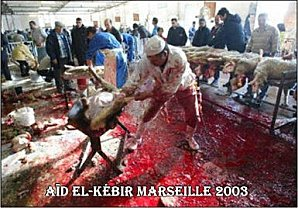 http://francaisdefrance.files.wordpress.com/2011/10/abattage-halal.jpg