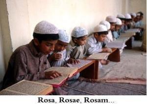 Madrasa-rosa