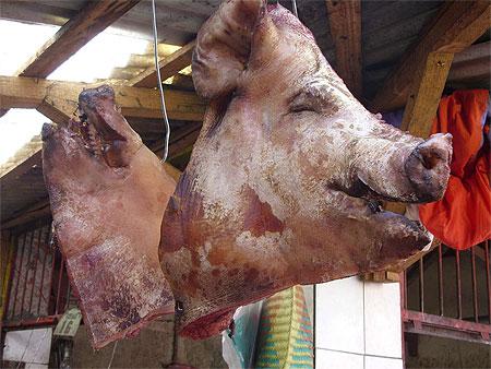 T te de cochon francaisdefrance 39 s blog - Tete de cochon a colorier ...